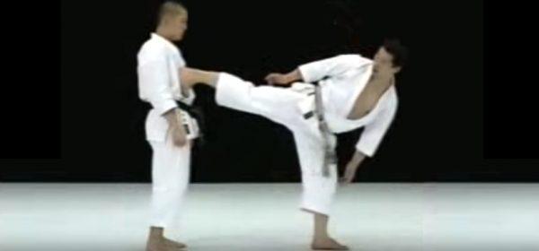 How to do Ushiro Geri or Back Kick