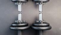 Reverse Biceps Curl