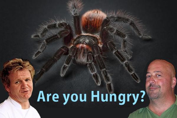 deep fried tarantulas