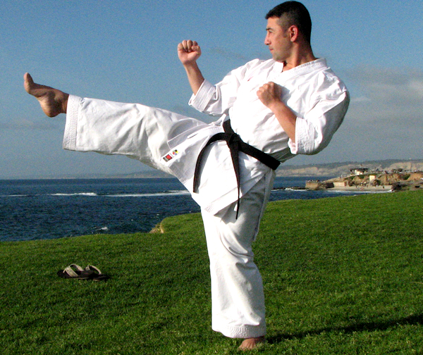 This is the proper execution of a Front Kick in Karate