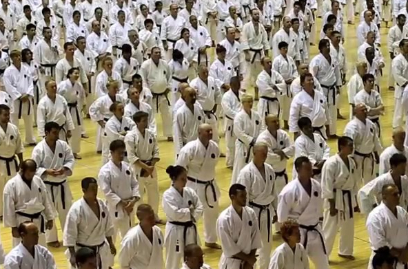 Karate Black Belts at a Karate Seminar