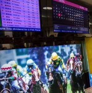 Horse Racing Software Solutions