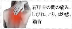 猫背、肩甲骨の間の痛み