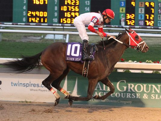 International Star wins his second straight race at the Fair Grounds (Lou Hodges Photography/Fair Grounds)