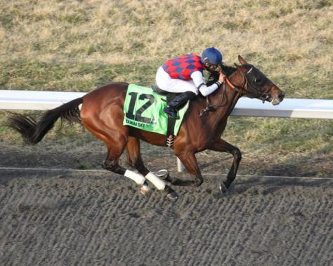 Dubai Sky won the Grade 3 Spiral Stakes by 2 1/4 lengths (Coady Photography / Turfway Park)