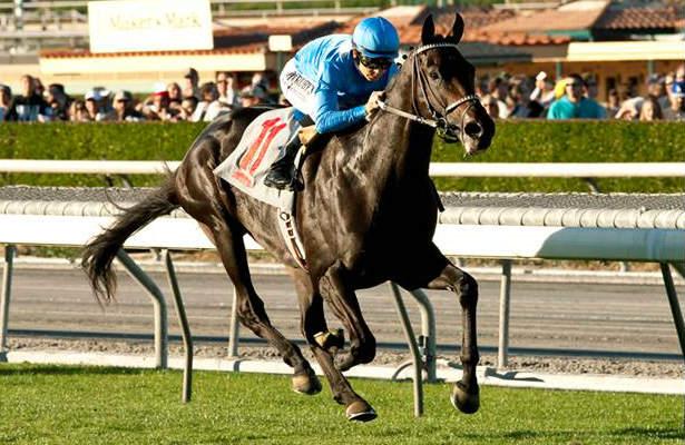 Bolo will be ridden by Rafael Bejarano in the Kentucky Derby (Benoit Photo / Santa Anita)