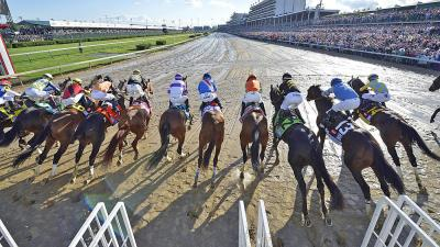 Belmont Stakes Odds Best Predictions 2019 - Expert Who
