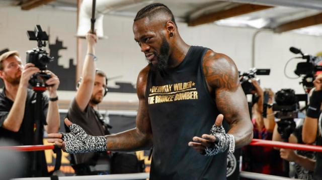 Image result for deontay wilder 2019