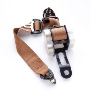 Seat Belts Image