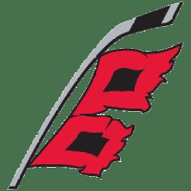 Image result for carolina hurricanes logo