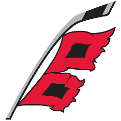 Image result for carolina hurricanes alternate logo