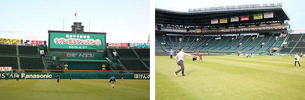 """9/14(土)・15(日) 「阪神甲子園球場でキャッチボールをしよう!」を開催 今回、初めて""""土""""エリアでもキャッチボールができるように!"""