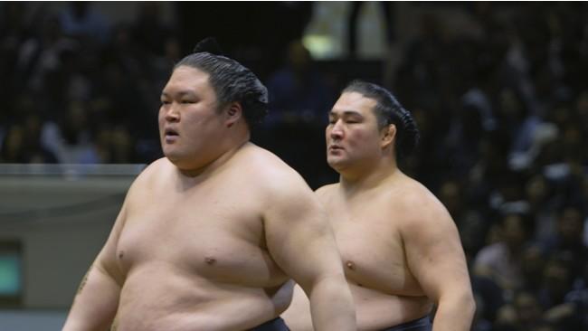 映画『相撲道』11月26日(木)、TOHOシネマズ 日本橋にて一夜限りのドルビーアトモス上映決定!!