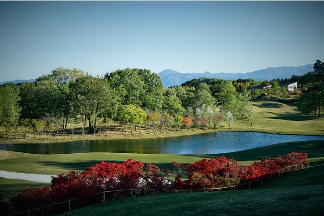 1年間で約3万本の植栽を行ない、どの季節にも心奪われる景観を楽しめる。