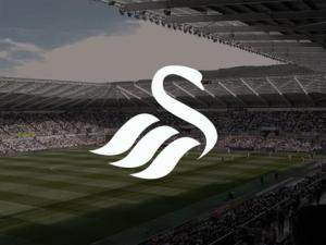 Swansea City Players salaries 2015-16