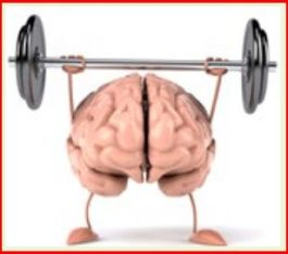 brain.medical