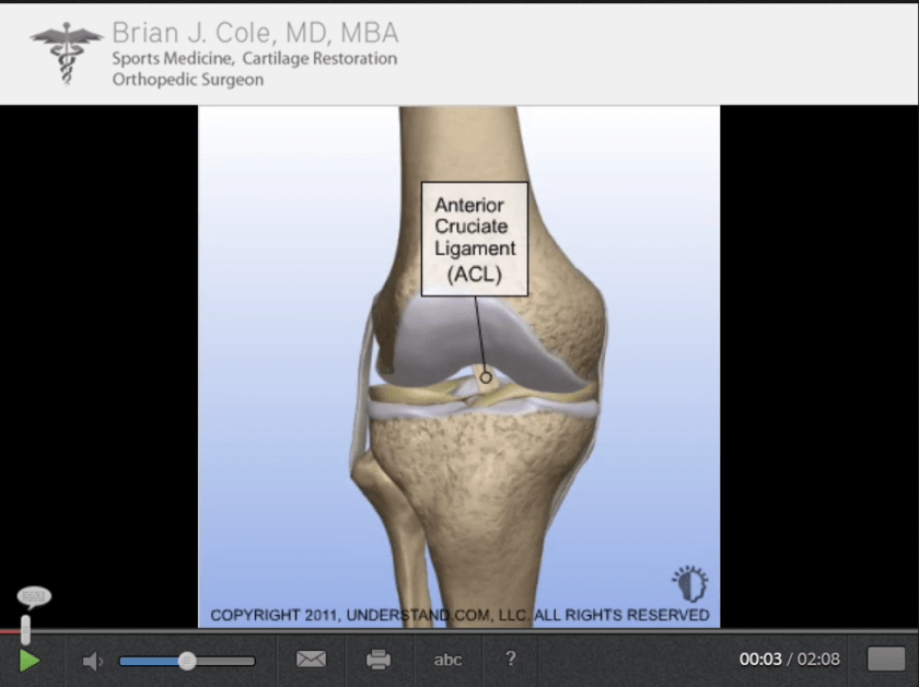 acl-allograft