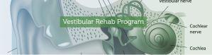 How vestibular rehab works
