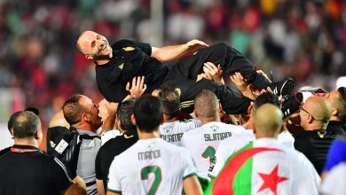 Photo of Djamel Belmadi joins Stephen Keshi and 10 others in an exclusive list