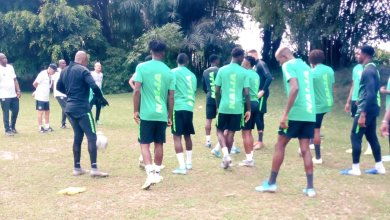 Photo of Anaemena Replaces Idowu As 14 Eagles Train In Uyo