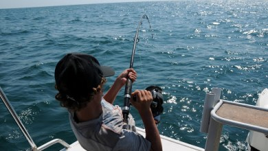 Photo of Alabama Deep Sea Fishing Rodeo Prepares For 87th Year