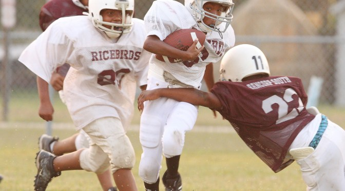 Pee wee football hits linked to brain damage.
