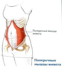 a boka ligamentumainak károsodása)