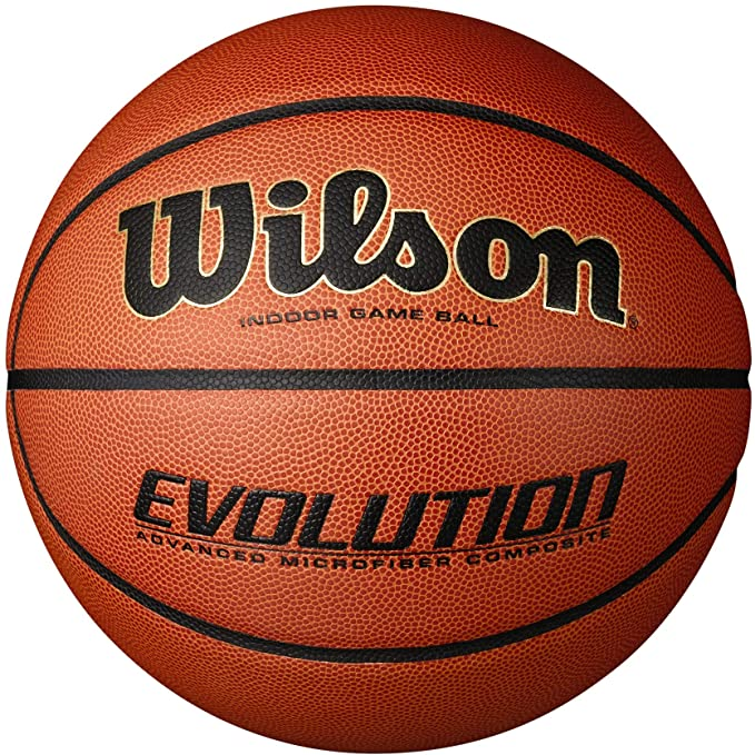 Wilson Evolution Indoor Game Ball