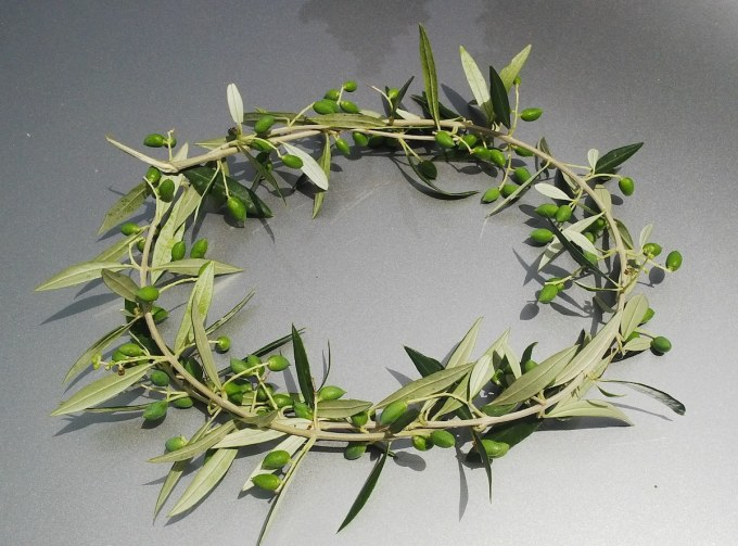 Facts About The Olympics – Olive Wreath/Kotinos for Ancient Olympic Champions