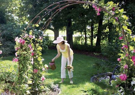 6 proiecte de grădină cu impact maxim