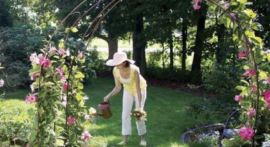 6 proiecte ieftine de grădină, dar cu impact maxim, de făcut vara asta