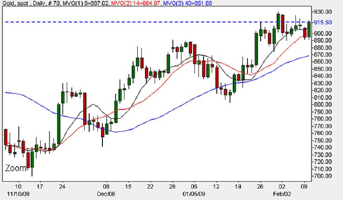 Spot Gold Prices - Daily Candle Chart February 10th 2009