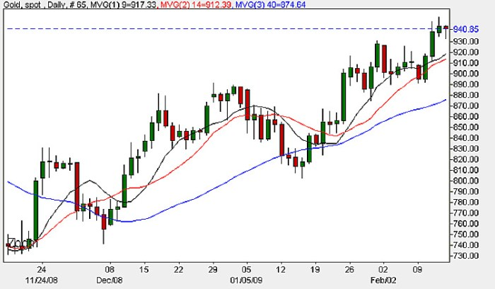 Spot Gold Prices - Daily Candle Chart 17th February 2009
