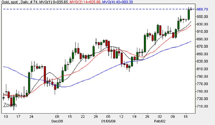 Spot Gold Prices - Daily Candle Chart 18th February 2009