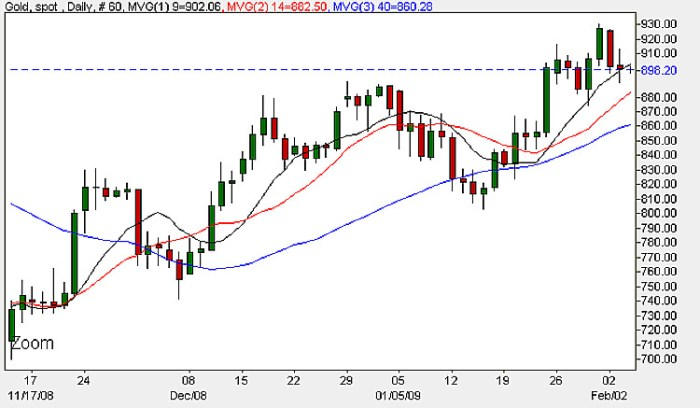 Spot Gold Prices - Daily Candle Chart February 4th 2009