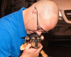 09-07-17 harvey dogs-9243