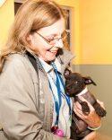 09-07-17 harvey dogs-9387