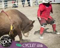 Spotted: Double M Professional Rodeo Finals at the Schaghticoke Fair Sept 2 in Schaghticoke, NY.