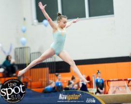 gymnastics-6432