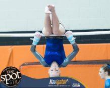 gymnastics-6760