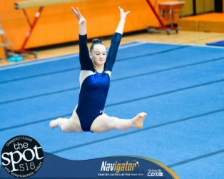 gymnastics-8135