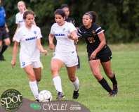col-shaker soccer-3056