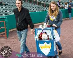 paws in the park-9802