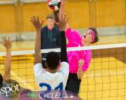 Col-shaker volleyball-5922