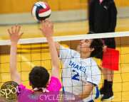 Col-shaker volleyball-6384