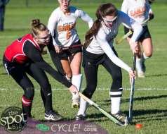 field hockey-9106