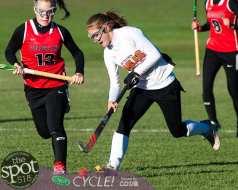 field hockey-9516