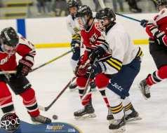 S-C AA hockey-8722