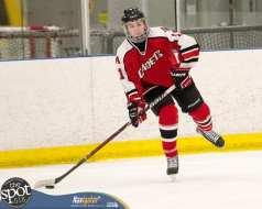 S-C AA hockey-8929