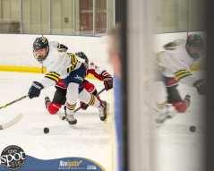 S-C AA hockey-9025